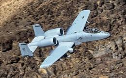 'Lợn chiến' - sát thủ diệt tăng hơn 40 năm tuổi của không quân Mỹ chưa chịu ngừng bay
