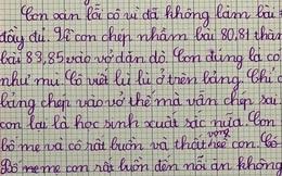 """Làm nhầm bài tập cô giao, học sinh viết bản kiểm điểm sướt mướt, tự trách mình """"có mắt như mù"""""""
