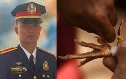 Philippines: Cảnh sát trưởng thiệt mạng thương tâm vì một con gà chọi