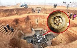 Chuyên gia khảo cổ 'tim đập chân run' mỗi khi tìm thấy trứng trong lăng mộ - Lý do vì đâu?