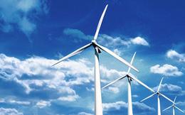 Sắp có nhà máy điện gió 8.000 tỷ đồng ở Bạc Liêu - có kịp tiến độ hưởng giá FIT?
