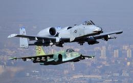 """Những cỗ """"xe tăng bay"""": Su-25 của Nga giống A-10 Warthog của Mỹ chừng nào?"""