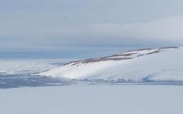 Băng tan ở Nam Cực làm lộ ra 'xác ướp' 800 năm tuổi vẫn còn nguyên vẹn của chim cánh cụt