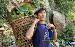 'Người rừng' Hồ Văn Lang sau 7 năm trở về làng
