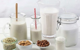 Sữa bò, sữa đậu nành, sữa yến mạch, sữa gạo - loại nào tốt nhất: Chuyên gia dinh dưỡng Úc trả lời