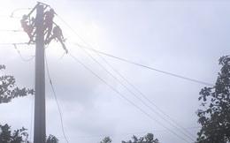Vụ kê giàn giáo cắt dây điện 3 pha: Gia đình tố điện lực Ba Tơ quá chậm trễ