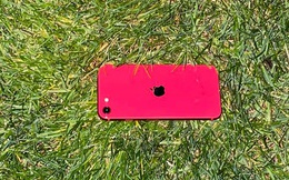 Định vị tìm lại điện thoại iPhone bị mất bằng cách nào?