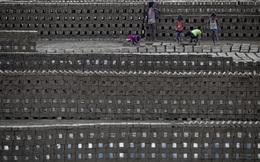 24h qua ảnh: Trẻ em lao động trong xưởng sản xuất gạch