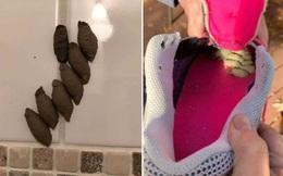 """Phát hiện ra mấy """"vật thể lạ"""" trên tường nhà tắm, người phụ nữ được khuyên nên chuyển nhà mau"""