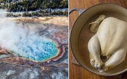 3 du khách 'thử nghiệm' luộc gà bằng suối nước nóng xem có chín không và cái kết hết sạch cả tiền