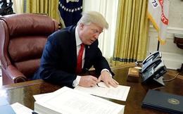 Nếu không thắng, ông Trump vẫn đút túi trăm triệu đô nhờ viết hồi kí