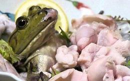 """Rùng mình món sinh tố được """"ép"""" từ những con ếch sống"""