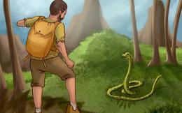 """Test 5 giây: Nếu bất ngờ gặp rắn độc, bạn sẽ xử lý như thế nào trong tình huống """"ngàn cân treo sợi tóc"""" này?"""