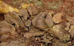 Bí mật đau lòng về ngôi mộ của cặp song sinh 3 vạn năm