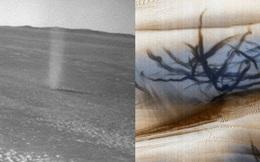 NASA phát hiện loạt vết đen khổng lồ đầy bí ẩn gây ra bởi 'quỷ bụi' trên bề mặt Hỏa Tinh