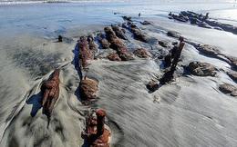 """Dạo biển, cặp đôi gặp """"tàu ma"""" bất ngờ hiện ra trên bãi cát"""