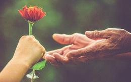 Có phải chúng ta luôn tử tế với người ngoài hơn người thân?