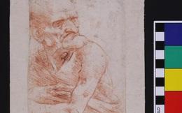 Trên bức tranh trăm năm tuổi của Leonardo da Vinci, người ta phát hiện ra cả một thế giới tí hon độc đáo