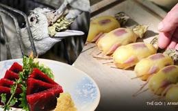 """Súp vi cá mập, gan ngỗng, sushi cá ngừ xanh, liệu con người có thấu nỗi đau ai oán mà loài vật phải chịu đựng để cho ra ẩm thực """"tinh hoa""""?"""