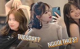 Chẳng riêng Huỳnh Anh, nhiều gái xinh cũng từng chiếm spotlight vì bị tố là Tuesday