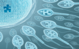 Cảnh báo: Nam giới 21-59 tuổi mắc sai lầm này sẽ khiến tinh trùng bị yếu đi sau từng đêm
