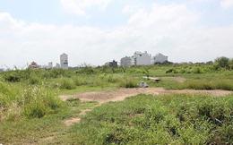 Phân lô bán nền cả đất quy hoạch trường học