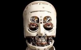 Những hình ảnh đầu tiên của robot có khả năng bắt chước hành động, tương tác với phía đối diện như con người thực thụ mà không cần điều khiển