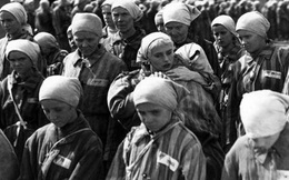 Tình báo thương mại Thụy Điển trong Thế chiến II