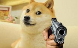 Người đàn ông Texas bị chó cưng bắn thủng chân