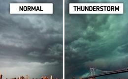 Những dấu hiệu dự báo về các hiện tượng tự nhiên mà chúng ta nên biết