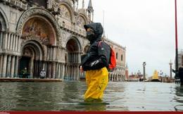 Thành phố Venice lại 'thất thủ' trước triều cường vì... dự báo sai