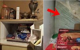 Tò mò chiếc bọc nilon trữ trong tủ lạnh nhà bạn gái, người đàn ông mở ra phát hiện cảnh tượng rợn người, hé lộ chân tướng bị giấu kín 14 năm