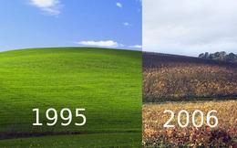 Sự thật đầy bất ngờ phía sau bức ảnh nền huyền thoại của hệ điều hành Windows XP
