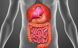 """3 bộ phận cơ thể """"trọng yếu"""" nhất: Biết chúng sợ gì mà tránh chính là cách để giảm bệnh tật"""