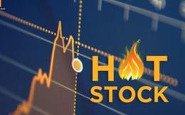 Một cổ phiếu tăng 320% sau 12 phiên