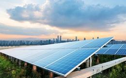 Xuất hiện thêm một công ty Thái Lan rót hàng nghìn tỷ đồng vào điện mặt trời Việt Nam