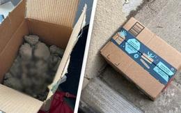 """Cô gái bỏ """"mìn mèo"""" vào hộp để trước cửa nhà dằn mặt kẻ trộm đồ ship, 40 phút sau cái hộp không cánh mà bay"""