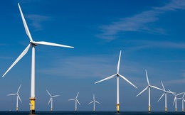 'Đại gia' Đức muốn làm siêu dự án điện gió 4,8 tỷ USD ở Bình Định