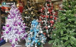 Sát Giáng sinh, cửa hàng ồ ạt đại hạ giá cây thông Noel xuống 50.000 đồng vì đói khách