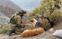 """""""Hồi chuông tử thần"""" đầu tiên của Thổ ở Karabakh: 5 năm tới sẽ là địa ngục cho quân Nga?"""