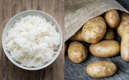 Cơm hay khoai bổ dưỡng hơn? Đọc ngay so sánh chi tiết để không bỏ lỡ loại thực phẩm nhiều dưỡng chất