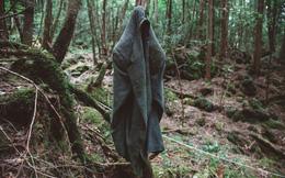 Nhật Bản có một khu rừng khiến la bàn, GPS bị nhiễu loạn: Hàng trăm người thiệt mạng tại đây, vì sao?