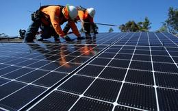 Lắp càng nhiều thì càng rẻ: Giá thành điện mặt trời đã giảm 89% chỉ trong 10 năm