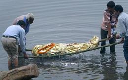 Hồ thiêng ở TQ: 800.000 tấn tôm cá nhưng không một ai dám đánh bắt - Lý do vì đâu?