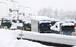 Tuyết rơi dày tới hơn 2m tại nhiều địa phương ở Nhật Bản