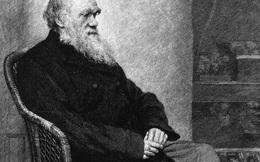 160 năm sau, các nhà khoa học thừa nhận Charles Darwin đã đúng về việc lý do tại sao côn trùng mất khả năng bay