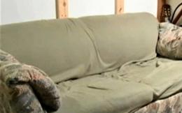 Có ít tiền nên mua thanh lý chiếc sofa cũ xấu xí còn bốc mùi, 3 sinh viên bàng hoàng phát hiện bí mật cất giấu bên trong