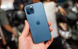 """5 mẫu iPhone giảm giá cực sâu, """"đỉnh nhất"""" là iPhone 12 Pro Max đang bán rẻ 3 triệu đồng"""