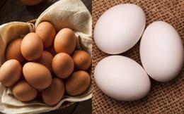 Trứng vỏ nâu hay trứng vỏ trắng bổ dưỡng hơn? Chuyên gia chỉ cách chọn trứng chuẩn nhất
