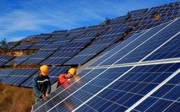 BCG: Khai thác thương mại thêm 43MW điện áp mái trong năm 2020, cổ phiếu tiếp đà thăng hoa
